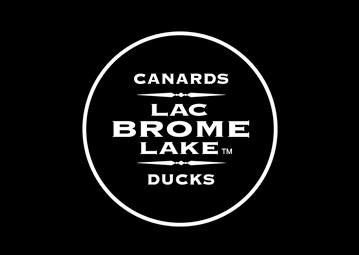canard_lac_brome